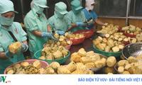 Ứng dụng công nghệ sau thu hoạch: Lối ra cho nông sản Việt