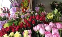 Giá hoa tươi tăng mạnh dịp 8-3