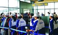 Nhật Bản dẫn đầu về 'hút' lao động Việt Nam