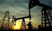 Giá dầu thô mất đỉnh 1 tháng