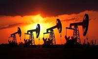 Mối lo dư cung quay lại ám ảnh thị trường dầu mỏ khu vực châu Á