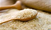 EU sắp có quy định mới về gạo nhập khẩu