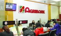 Agribank sẽ cổ phần hóa và được bán 35% vốn nhà nước