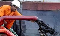 Giá dầu lên đỉnh 3 tuần nhờ số liệu tồn kho