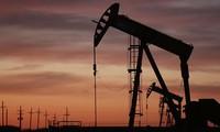 Giá dầu tăng liền mạch 3 phiên, vượt ngưỡng 50 USD/thùng