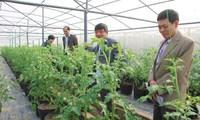 Nên lập 'ngân hàng đất nông nghiệp'