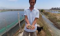 Dân trắng tay vì thủy sản chết hàng loạt, nghi vấn do sự cố nhà máy đường xả thải