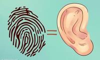 Đừng xem thường, tai không chỉ để nghe và xem tướng mà còn chẩn bệnh được đấy