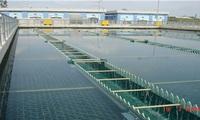 Saigon Water (SII) lãi đậm trong khoản đầu tư vào Công ty cấp nước Tân Hòa?