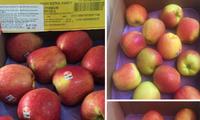 Nghi ngại táo Mỹ giá chỉ 44 nghìn đồng/kg