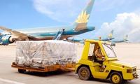 Hoàn thành kế hoạch năm, Noibai Cargo tính chia cổ tức tổng tỷ lệ 106% cho năm 2016