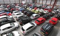 Mạo danh Bộ Tài chính bán đấu giá 181 xe ô tô trị giá 128 tỷ đồng