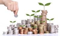 BCI, VNR, SKG, QNC, VHL, VE1, SPA: Thông tin giao dịch lượng lớn cổ phiếu