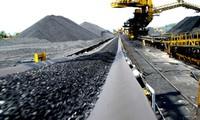 Tăng cường giám sát hoạt động của Tập đoàn than khoáng sản VN