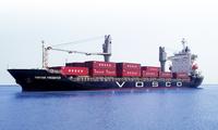 Doanh nghiệp kinh doanh vận tải biển: Ngập trong lỗ và nợ, dắt díu nhau rời sàn