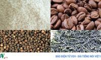 Thị trường xuất khẩu nông sản: Khó khăn chưa giảm