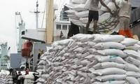 Myanmar sẽ xuất khẩu gạo sang Pakistan, cạnh tranh với Việt Nam