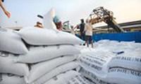 Xuất khẩu gạo sang Trung Quốc tăng mạnh