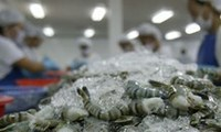 Bộ Nông nghiệp lên kế hoạch ngành tôm xuất khẩu 10 tỷ USD