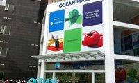 CTCP Tập đoàn Đại Dương tiếp tục đăng ký bán gần 3,5 triệu cổ phiếu OCH