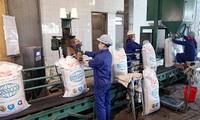 EU ngừng áp thuế nhập khẩu 400.000 tấn đường công nghiệp