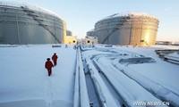 Nga nhắm đến vị thế nhà cung cấp năng lượng số 1 cho châu Á