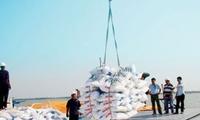 Nhập khẩu phân bón giảm mạnh