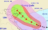 Bão số 7 sẽ đổ bộ vào các tỉnh từ Thái Bình đến Quảng Ninh