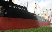 Nosco tiếp tục lỗ gần 95 tỷ đồng quý 1; nâng lỗ lũy kế lên 3.160 tỷ đồng