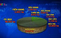 208.800 héc ta lúa chết vì hạn hán và ngập mặn