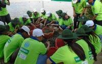 Vua tôm sinh thái Camimex (CMX) báo quý 4 lỗ 61 tỷ đồng do tăng trích lập dự phòng