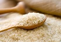 """Trung Quốc """"làm khó"""" hạt gạo Việt, doanh nghiệp nói gì?"""
