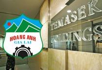 Cổ phiếu HNG tăng nóng, Temasek hoán đổi 200 tỷ trái phiếu HAGL thành cổ phiếu