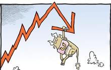 [Điểm nóng TTCK tuần 08/10 – 14/10] Thị trường chứng khoán Việt Nam và Thế giới đi qua biến động khó đoán định
