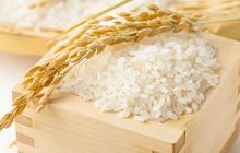 Tháng 9/2018 xuất khẩu gạo sụt giảm rất mạnh