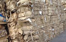 """Giấy tái chế và chuyện """"con sâu làm rầu nồi canh"""""""