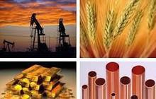 Thị trường ngày 16/10: Giá đường tăng phiên thứ 9 liên tiếp, vàng đắt nhất 2,5 tháng