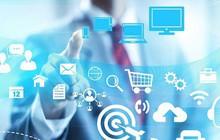 Cảnh báo doanh nghiệp tìm đối tác thông qua mạng Internet cần thận trọng