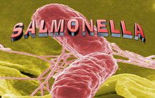 Vi khuẩn này có trong cơ thể người đang đứng trước tình trạng kháng thuốc, làm thế nào để bảo vệ bản thân mình?