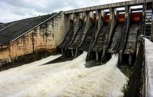 Thủy điện Đa Nhim - Hàm Thuận - Đa Mi (DNH): 9 tháng báo lãi đột biến hơn 800 tỷ đồng