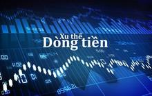 Xu thế dòng tiền: Kết quả kinh doanh đủ lực hỗ trợ thị trường?