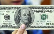 Lãnh đạo Cần Thơ lên tiếng về xử phạt người đàn ông đổi 100 USD