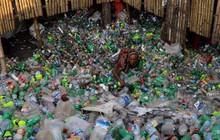 """Lần đầu phát hiện cơ thể người """"nhiễm nhựa"""""""