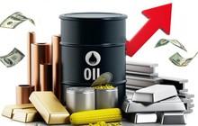 Thị trường ngày 15/11: Giá dầu đảo chiều tăng sau 12 phiên giảm liên tiếp