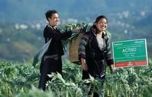 """Traphaco Sapa với sứ mệnh """"sức khỏe xanh"""" cùng các sản phẩm từ atiso"""