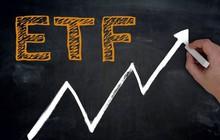 VNM ETF sẽ loại VCG, thêm GEX trong đợt cơ cấu danh mục tháng 12?