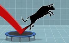 Thị trường rung lắc dữ dội, khối ngoại mua ròng gần 400 tỷ trong phiên 18/12