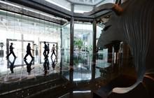 Các nền kinh tế lớn nhất Đông Nam Á đang có những động thái hiếm hoi