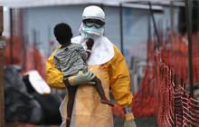 319 người chết vì đại dịch Ebola, thảm cảnh sắp quay trở lại?