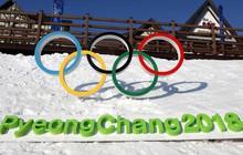 Bí quyết biến ước mơ thành hiện thực từ 5 niềm hy vọng vàng của Olympic Pyeongchang 2018